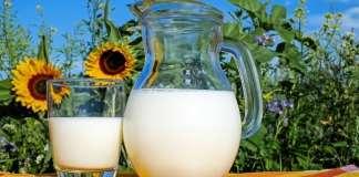 anyatej, tejfogyasztás terhesen