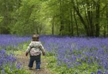 Tavasszal születik a baba? - 6 érdekes tény, amely után te is tavaszi babát szeretnél majd