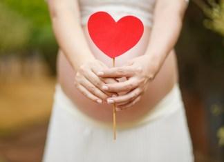 Terhesség - a második hónap