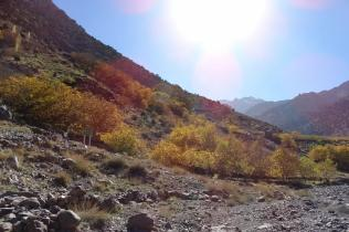 Morocco_High_Atlas_Toubkal_refuge_36