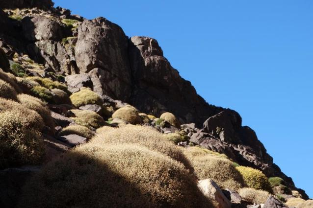 Morocco_High_Atlas_Toubkal_refuge_48