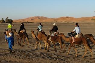 Morocco_Sahara_Merzouga_Erg_Chebbi_04