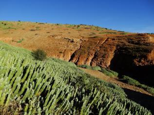 Morocco_Ouzoud_Falls_22