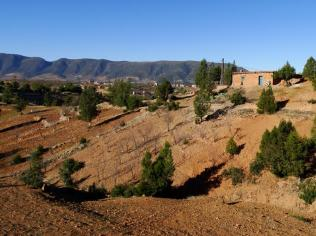 Morocco_Ouzoud_Falls_31