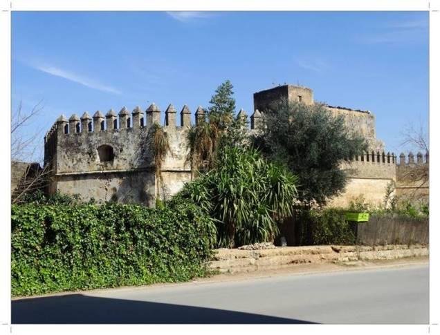 Morocco.Fes.kasbah.Dar.Dbibagh.Ville.Nouvelle.26