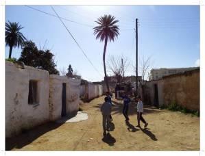Morocco.Fes.kasbah.Dar.Dbibagh.Ville.Nouvelle.42