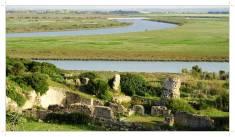 Łaźnie rzymskie, mozaika Neptuna porośnięta trawą