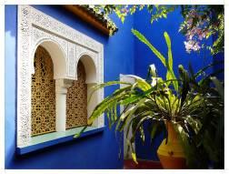 morocco-marrakech-majorelle-10