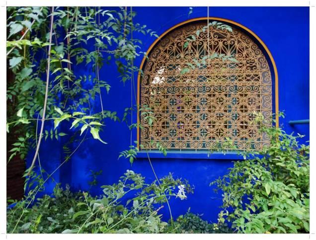 morocco-marrakech-majorelle-12