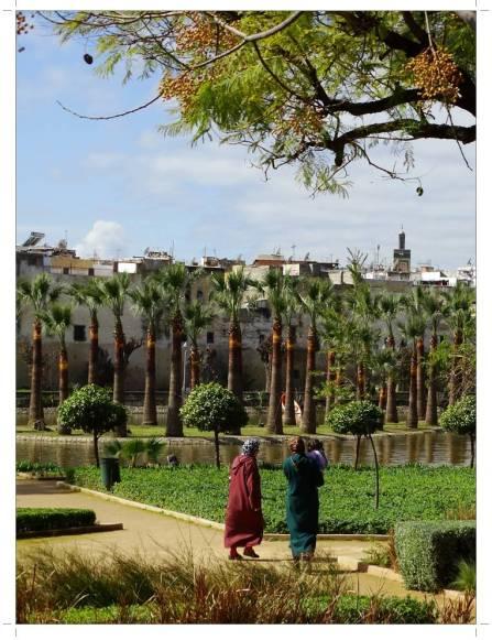 morocco_fez_jnane_sbil_garden_09