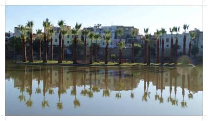 morocco_fez_jnane_sbil_garden_16