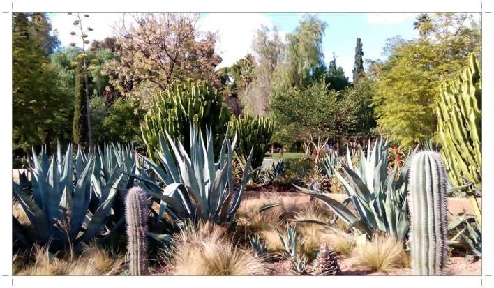 morocco_fez_jnane_sbil_garden_20