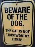 wtf-warning-sign-cat-trustworthy