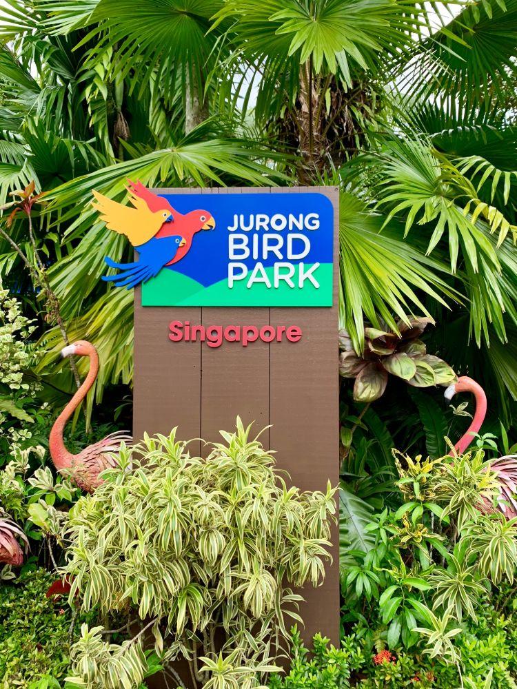 JurongBirdPark16