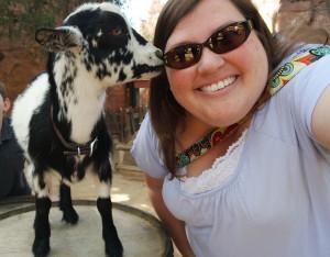 Goat kiss at Disneyland