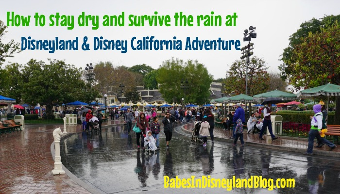 How to Survive Disneyland and Disney California Adventure in the Rain