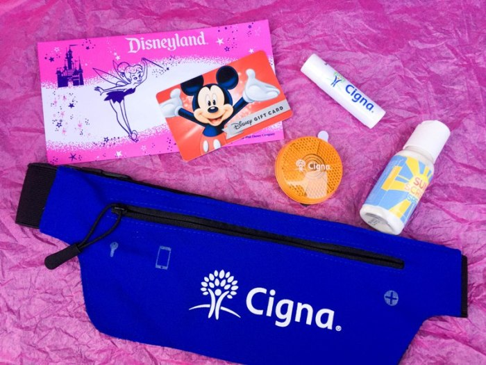 cigna-run-together-blogger-meet-up-disneyland-half-2016-26