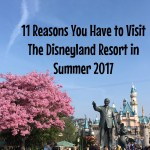 11 Reasons You Have to Visit The Disneyland Resort in Summer 2017