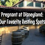 Pregnant at Disneyland: Our Favorite Resting Spots