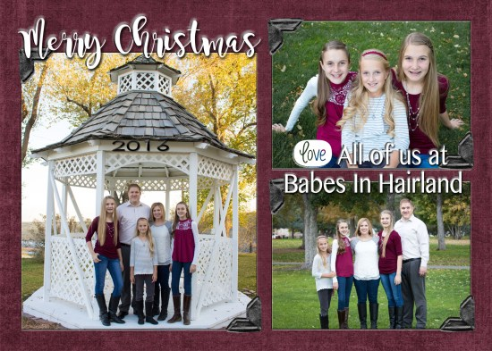 2016 Christmas Card from BabesInHairland.com