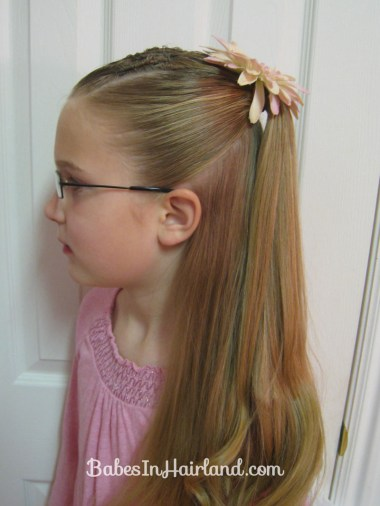 Cornrows and Half Ponytail (2)