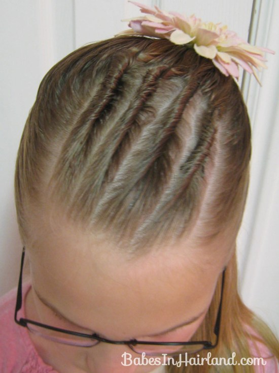 Cornrows and Half Ponytail (5)