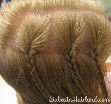Triple Braided Pocahontas Braids (3)