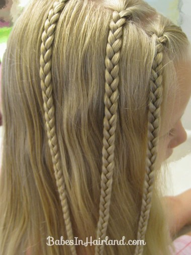Triple Braided Pocahontas Braids (4)
