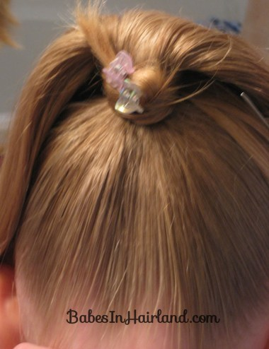 Fancy Wrapped Ponytail (11)