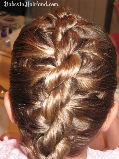 Rope/Twist Braid - French Style (5)