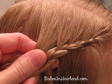 Pretty Pocahontas Braids (2)