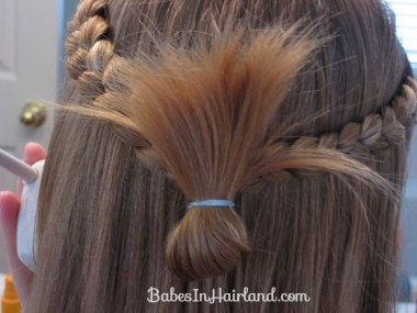 Simple Braids & a Turkey Tail (6)
