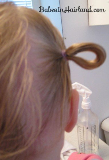 Pull Through & Baby Ponytails (4)