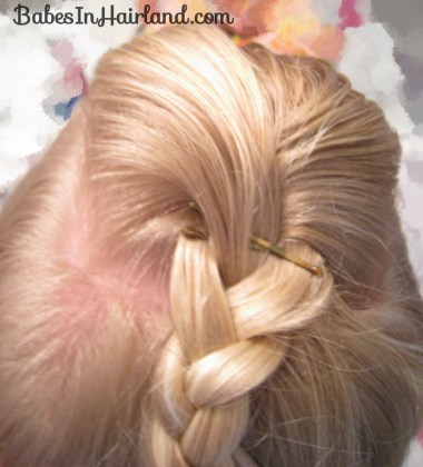 Cascade/Feathered Braid Hairstyle (2)