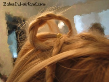 Cascade/Feathered Braid Hairstyle (12)