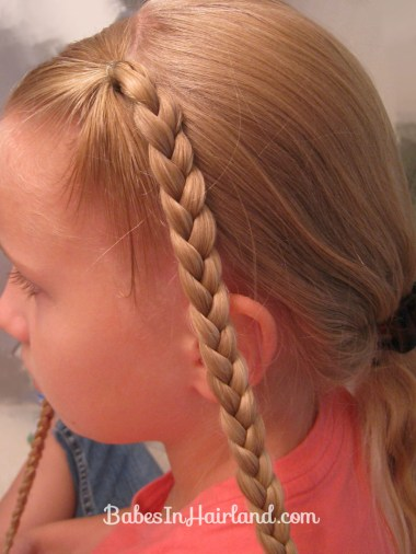 Ponytails and Braids Hairstyle (2)