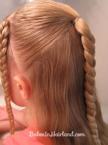 Ponytails and Braids Hairstyle (3)