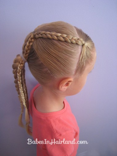Ponytails and Braids Hairstyle (8)