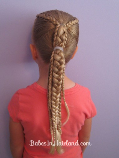 Ponytails and Braids Hairstyle (13)