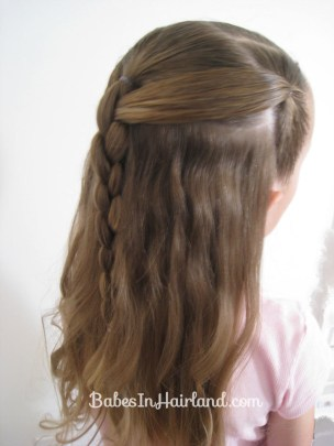 Ponies and 4 Strand Braid (10)