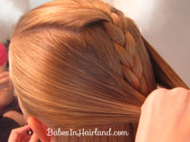 Braided Braid (4)