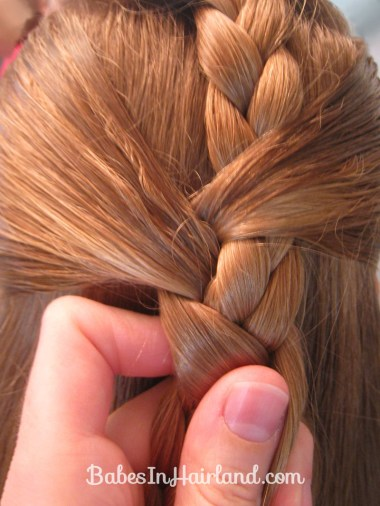 Braided Braid (5)