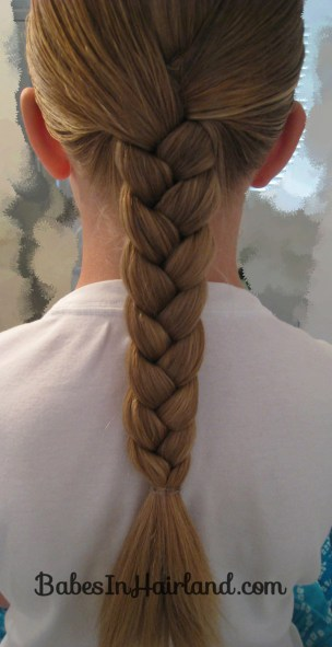 Rolled Up Braid (2)