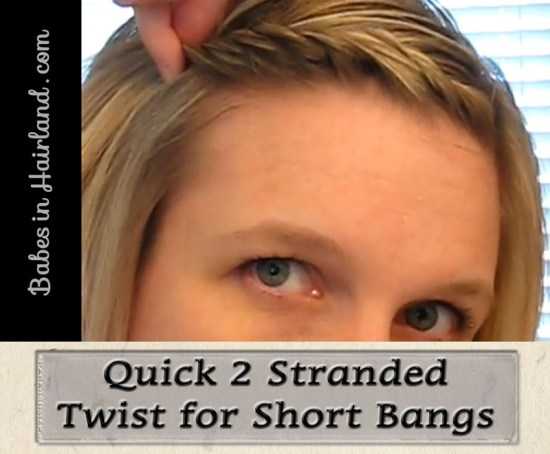 Simple 2 Strand Twist for Bangs (1)