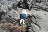 Rowen attempting to scale a rock
