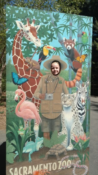 Damien the zookeeper
