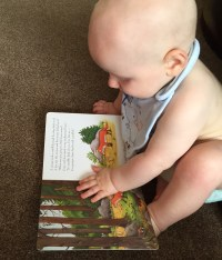TM (almost bald 8 month old baby wearing a bib and nappy only) with his hand on the open Gruffalo book with a page showing an illustration of a wood and a fox and on the other page there is some writing and the fox talking to the mouse