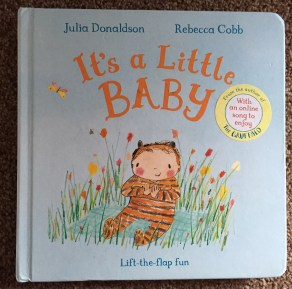 Cover of It's a little baby showing an illustration of a baby wearing a tiger onesie sitting in amongst some plants. Background is pale blue and the title is in orange text.