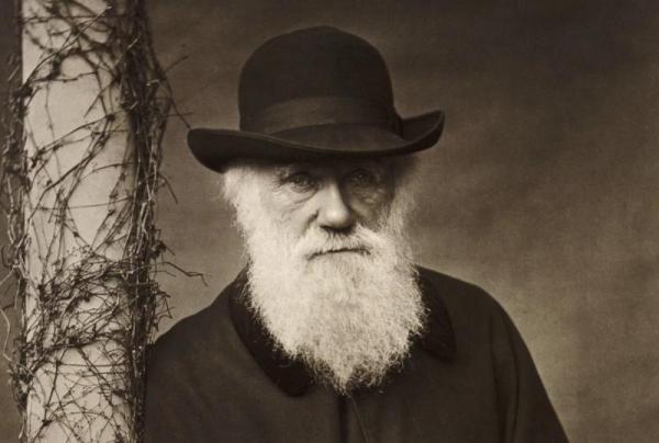 Целых 20 лет ищут исчезнувшие записи Чарльза Дарвина