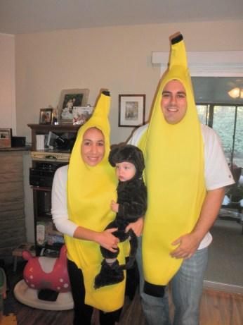 The Monkey & His Bananas